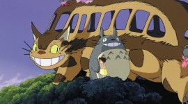 My Neighbor Totoro Photo#1