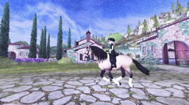 Star Stable Online Photo