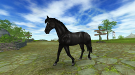 Star Stable Online Wallpaper For PC
