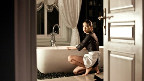 The Housemaid wallpapers high quality