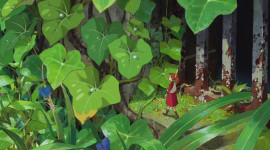 The Secret World Of Arrietty 1080p#2