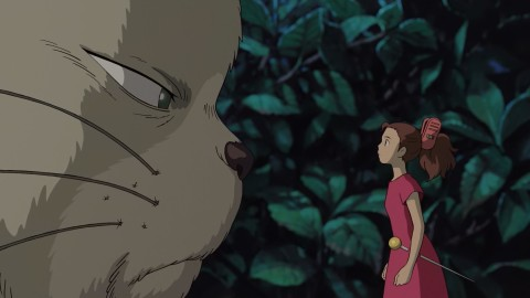 The Secret World Of Arrietty wallpapers high quality