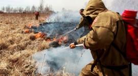 Wildfire In Siberia Wallpaper For Desktop