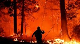 Wildfire In Siberia Wallpaper For PC