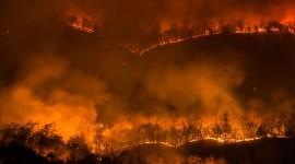 Wildfire In Siberia Wallpaper Free