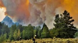 Wildfire In Siberia Wallpaper HQ