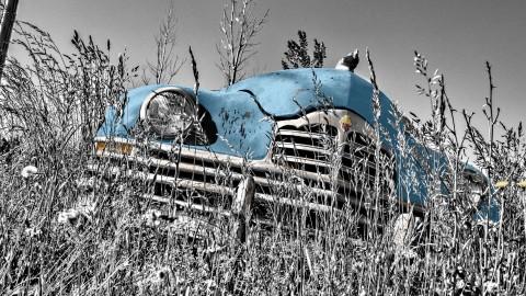 4K Bonnet Car wallpapers high quality