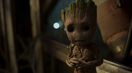 4K Groot Photo Free