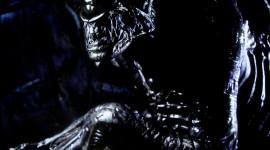 Alien Vs. Predator Wallpaper For IPhone