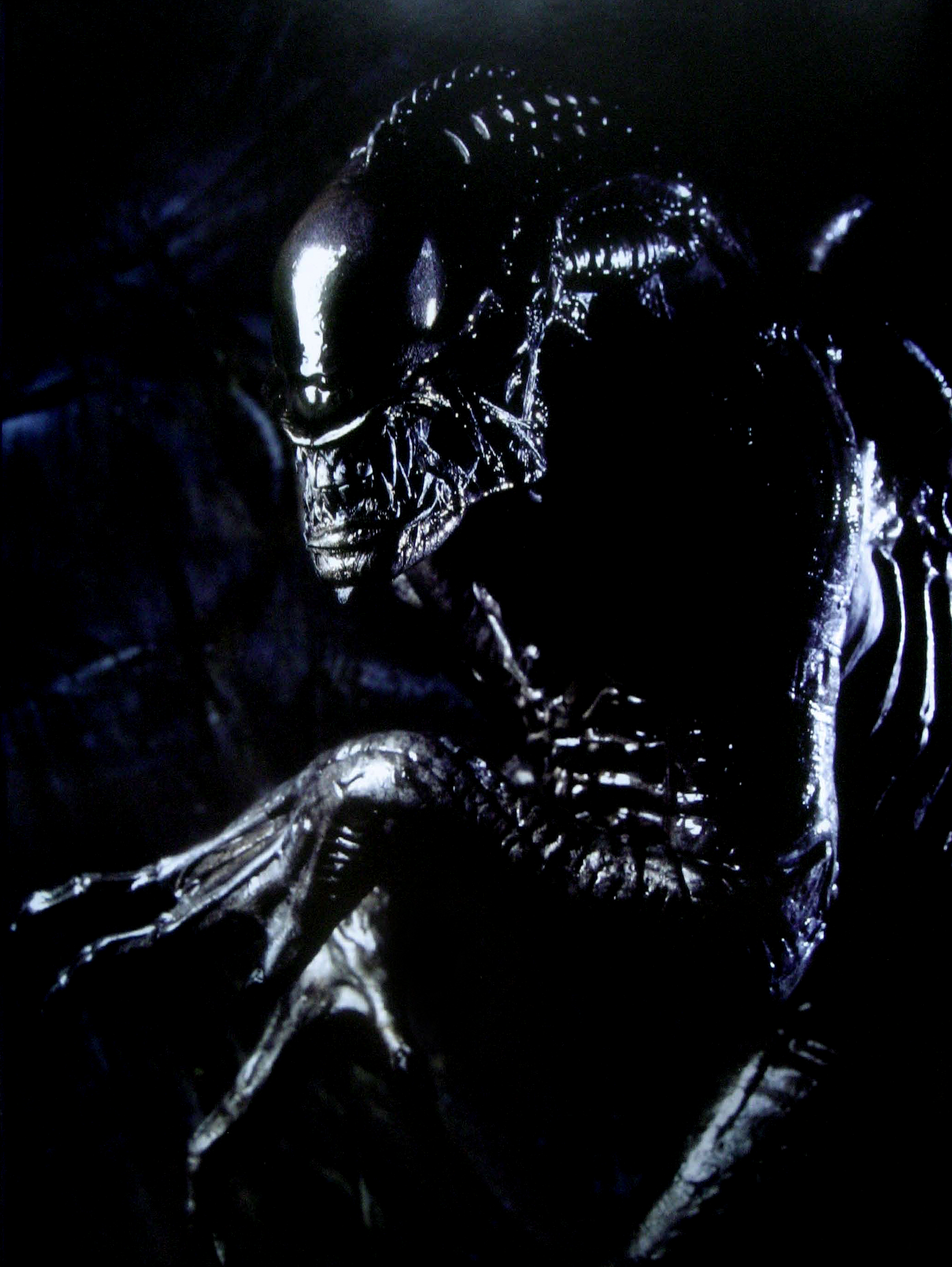 Alien Vs Predator Wallpapers High Quality Download Free