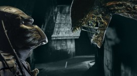Alien Vs. Predator Wallpaper Free