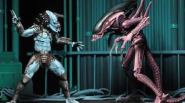 Alien Vs. Predator Wallpaper Full HD