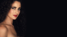 Andie MacDowell Wallpaper For PC