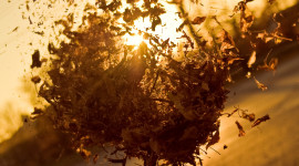 Autumn Wind Desktop Wallpaper HD