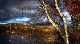 Autumn Wind Wallpaper For Desktop