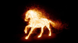 Fire Horse Aircraft Picture