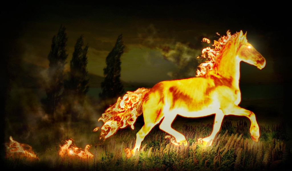 Fire Horse wallpapers HD