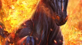 Fire Horse Wallpaper For Android