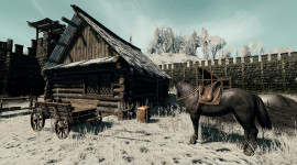 Life Is Feudal Mmo Photo Free