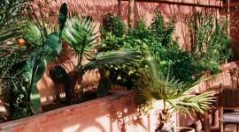 Marrakesh Wallpaper For IPhone