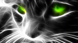 Neon Cat Desktop Wallpaper