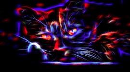 Neon Cat Wallpaper For Desktop