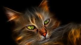 Neon Cat Wallpaper Free