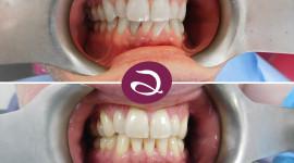 Orthodontist Wallpaper