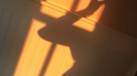 Shadow Wallpaper