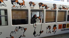Trains In Japan Wallpaper 1080p