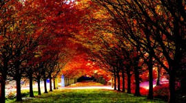 4K Autumn Season Wallpaper Download