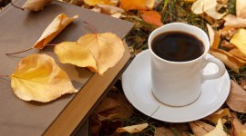 4K Coffee Autumn Photo