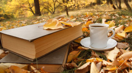 4K Coffee Autumn Photo Free