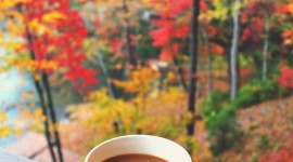 4K Coffee Autumn Wallpaper For Android#2