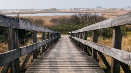 4K Wooden Bridge Photo Download