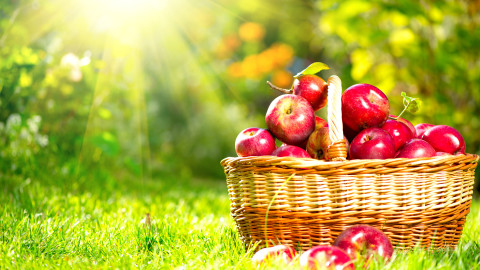 Apples Basket wallpapers high quality