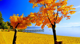Autumn Sea Image Download