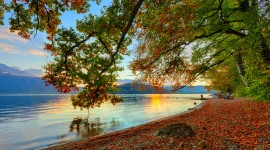 Autumn Sea Photo Free