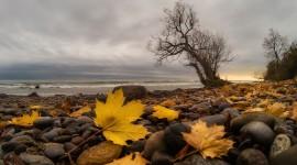 Autumn Sea Wallpaper 1080p