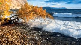 Autumn Sea Wallpaper