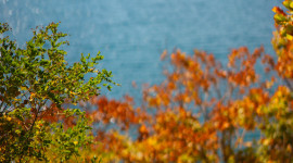 Autumn Sea Wallpaper For IPhone