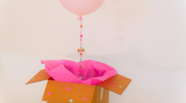 Balloon In A Box Aircraft Picture