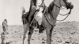 Bedouins Wallpaper Download
