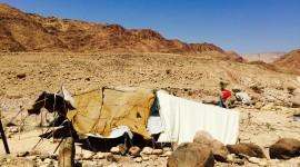 Bedouins Wallpaper Full HD