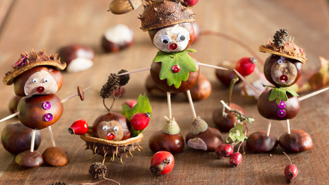 Chestnut Crafts wallpapers high quality