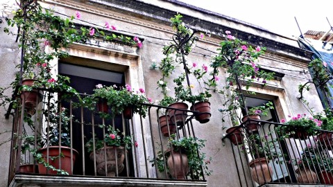 Flowers Balcony wallpapers high quality