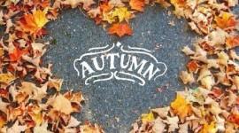 I Love Autumn Wallpaper HQ