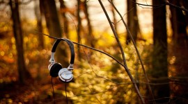 Music Of Autumn Image Download