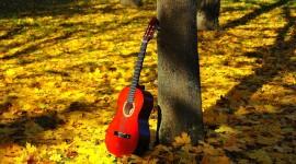 Music Of Autumn Photo