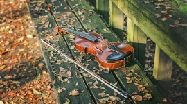 Music Of Autumn Photo Download